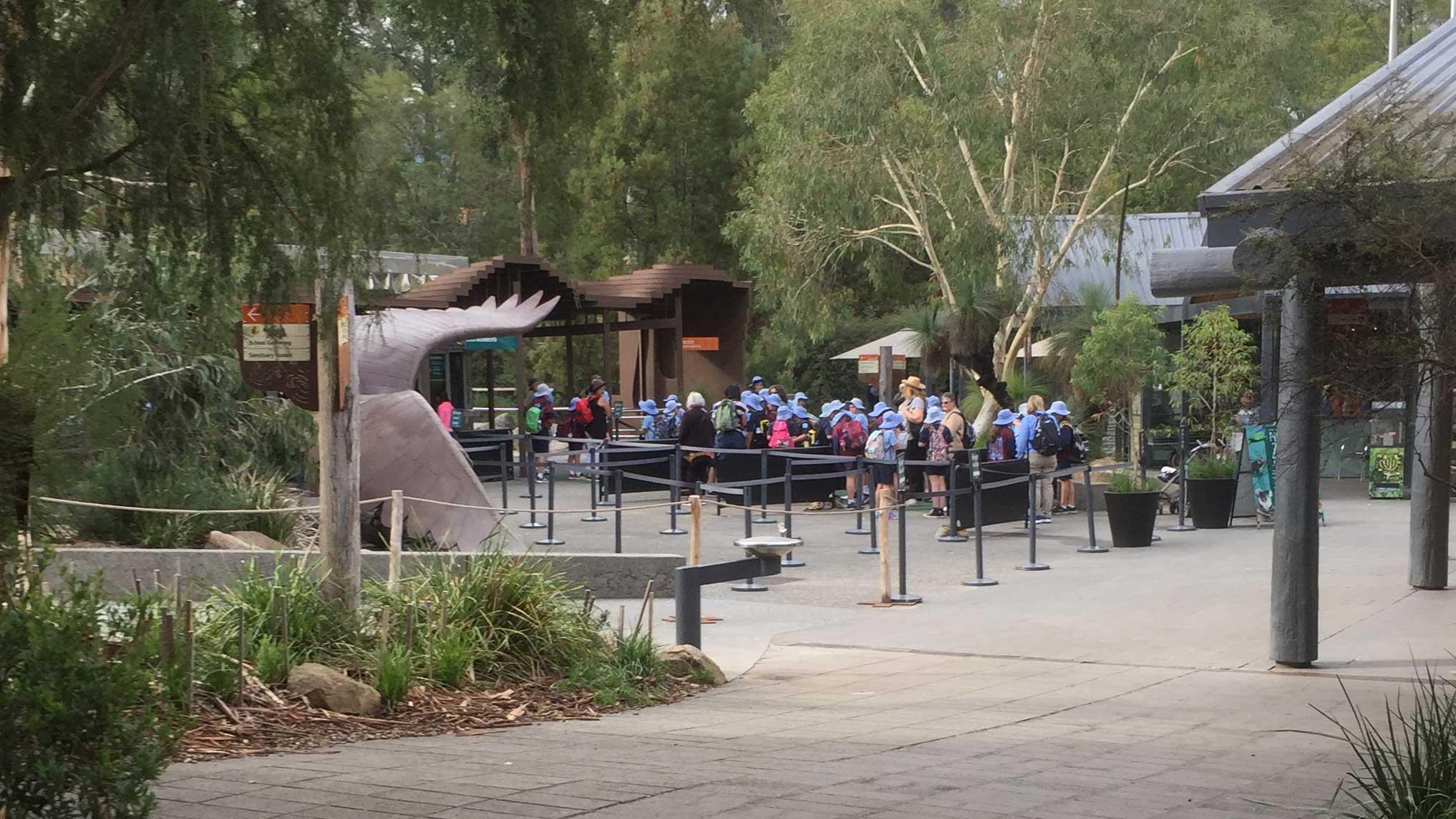 Event: Wipe For Wildlife (Zoos Victoria)