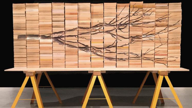 Art: Eucalypt Sculpture Commission – Castlemaine State Festival