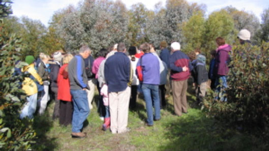 Open Days: Currency Creek Arboretum