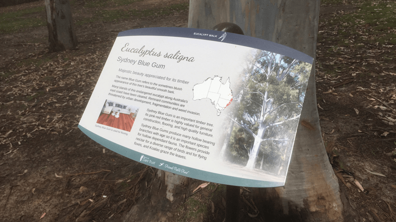 Activities: Australian National Botanic Gardens