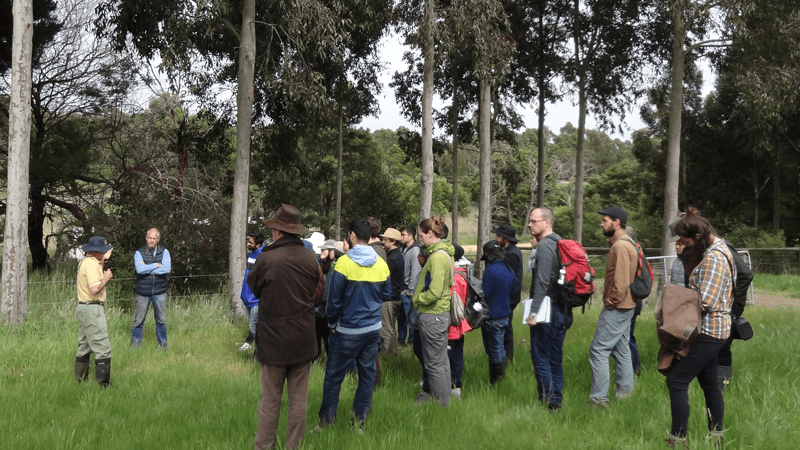 Tour: Bambra Agroforestry Farm Tours