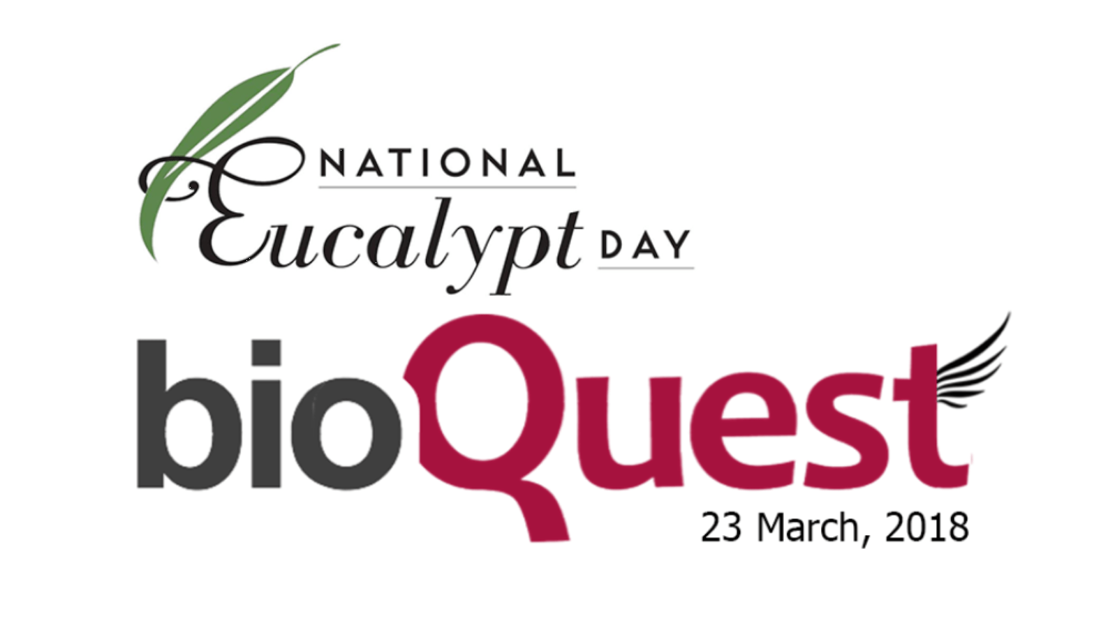 Activity: BioQuest