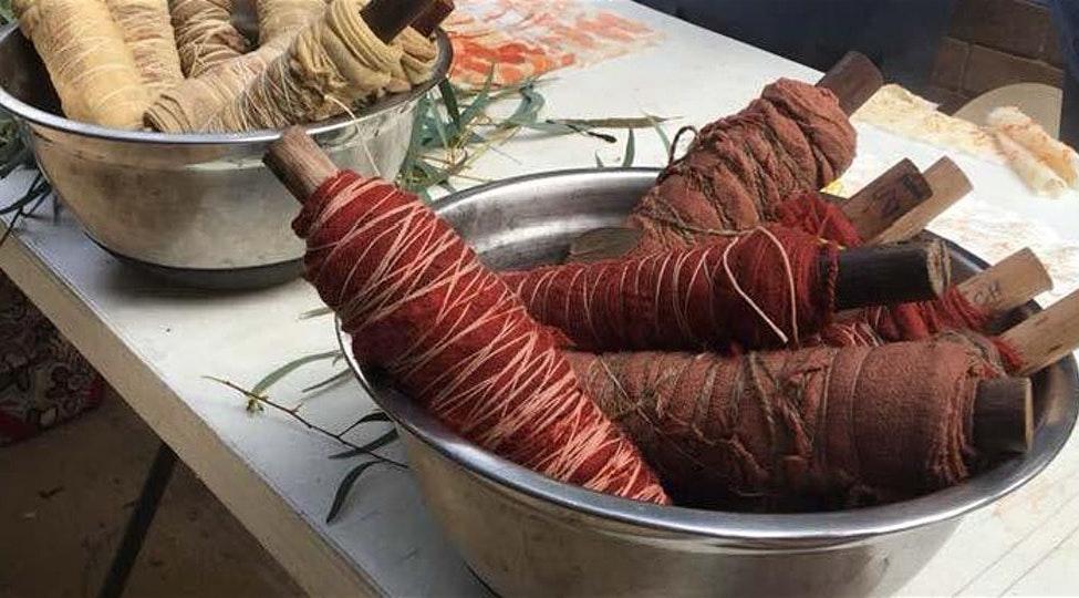 Eucalypt Dyeing Workshop: Australian National Botanic Gardens CANCELLED