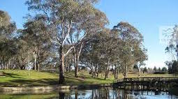 Guided walk: Orange Botanic Garden