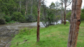 Guided Walk:  Warrandyte State Park - CANCELLED
