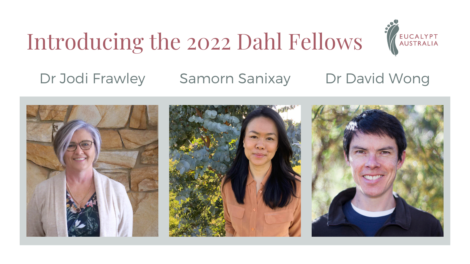 The Board Of Eucalypt Australia Is Delighted To Announce The 2022 Dahl Fellowships.